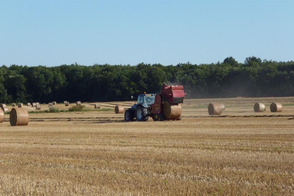 Exploitation agricole Champ du bourg